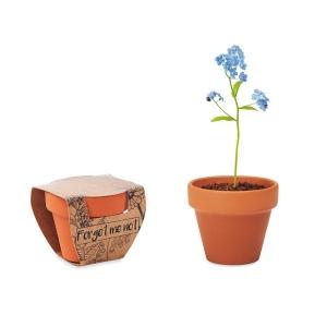 Produit personnalisé Pot de graînes de mysotis Plantes