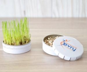 Produit personnalisé Boite à graîne publicitaire Plantes