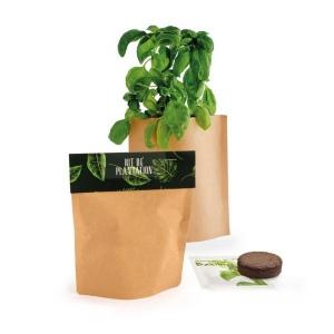 Produit personnalisé Petit pot Kraft de plante promotionnel Plantes